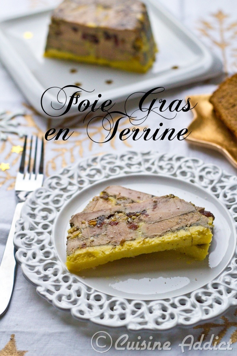 foie gras en terrine cranberries abricots s ch s. Black Bedroom Furniture Sets. Home Design Ideas