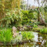 Jardin de la Mortella, Ischia