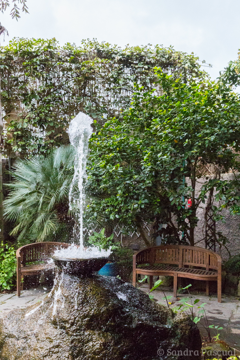 Jardin La Mortella - Sandra Pascual-1127