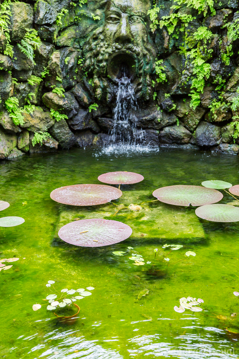 Jardin La Mortella - Sandra Pascual-1139