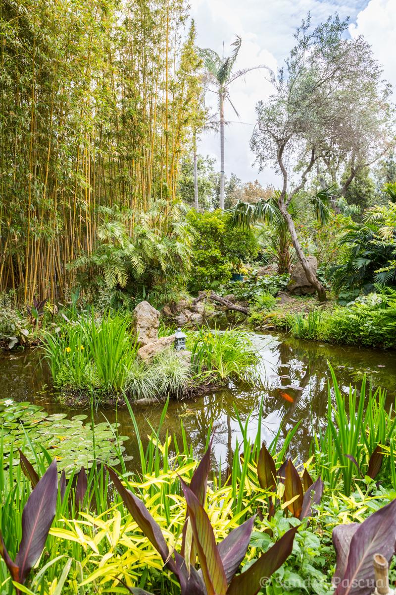 Jardin La Mortella - Sandra Pascual-1188